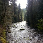 Evidence that I went on a hike. This is the Salmon River.